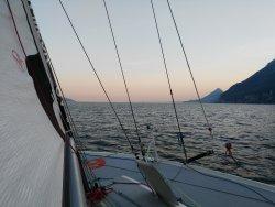 Sailingarda