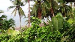 A&B Coral Resort