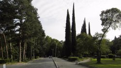 Townpark - Градски парк