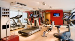 PULLMAN TOULOUSE AIRPORT FITNESS