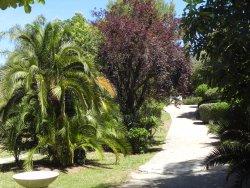 Parc Areca Jardin Botanique