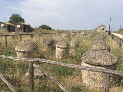 Necropoli di Tarquinia