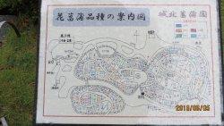 Shirokita Shobu Garden