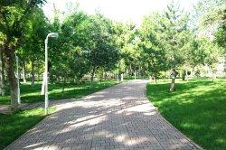 Gultepe Parkı