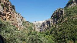 Horsh Ehden Nature Reserve