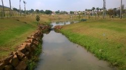 Jacarandas Park