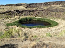 Diamond Craters Outstanding Natural Area