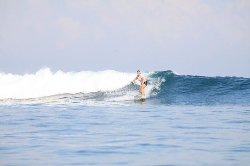 Double D Surf School - Kursus berselancar