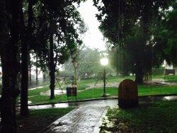 Parque Luiz Gonzaga da Silva Leme