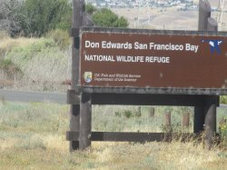 Don Edwards San Francisco National Wildlife Refuge