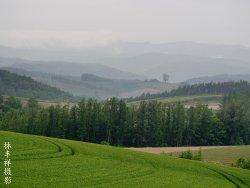 Biei Farm