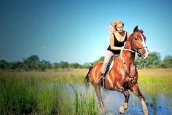 Horseback Safari