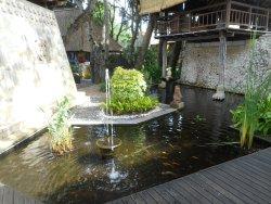 Behind pool area