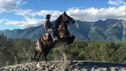 Alaska Horse Adventures