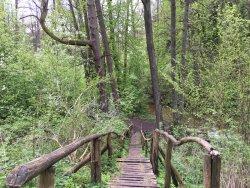 Czartowe Pole Nature Reserve