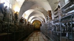 巴勒莫嘉布遺修院地下墓室