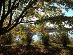 Beavermead Park