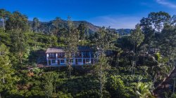 Located in the middle of the Tea Estate