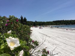 Pemaquid Beach Park