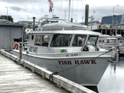 Fish N' Chips Charters