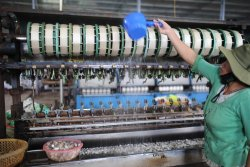 Cuong Hoan Silk Factory