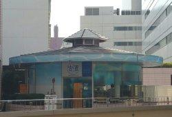 Choki Jukusei Nihonshu Bar Shusaron