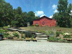 Erin's Meadow Herb Farm
