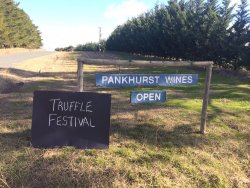 Pankhurst Wines