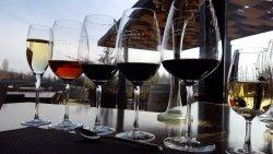 Trout & Wine Tours
