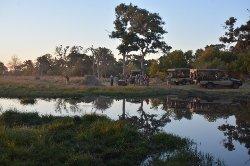 Trip of a lifetime at Belmond Khwai River Lodge