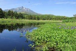 Minamihama Wetland