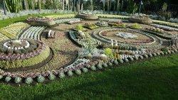 Carl Johans Park