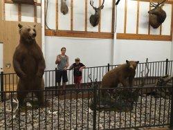 Montana Adventure Stop 4D Theater