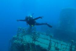 Vip Divers