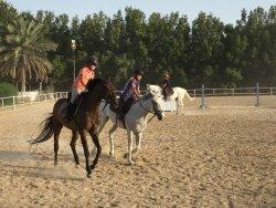 European Equestrian Center Dubai