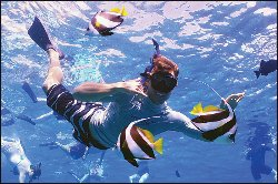 Malolo Molokini Snorkeling Tour