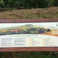 Kilmagad Wood