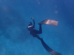 Zen Freediving