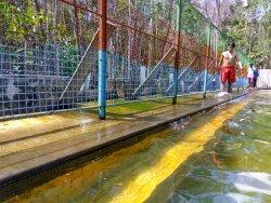 Natural Baths Tirta Marundang