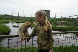 Blaavand Zoo