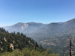 ‪San Bernardino National Forest‬