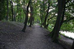 Каштановый парк
