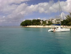 Barbados Excursions - Catamaran Turtle Snorkeling Tour