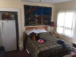 Springmount Motel