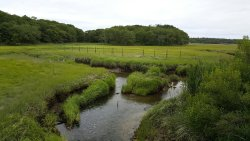 Scorton Creek