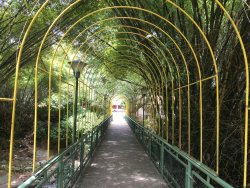 Jardin Botanico Eloy Valenzuela