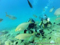 Giedre & Enrique Diving