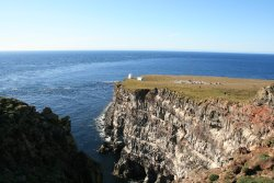 Latrabjarg bird cliffs