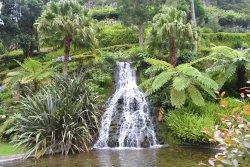 Garden of Quinta Do Moinho