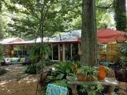 Lazy Rabbit Cottage on the Bayou
